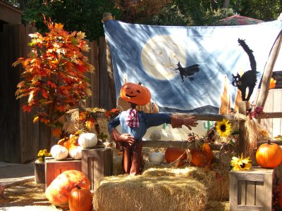 Fall Festival Backdrops
