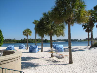 The White Sand Beach Of Grand Floridian Photo By Brian Bennett