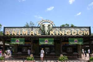 Image of Disney's Animal Kingdom