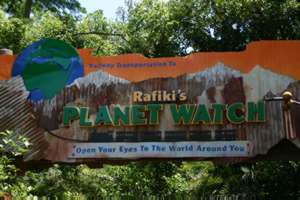 Image of Rafiki's Planet Watch