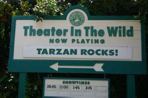 Image of Tarzan Rocks