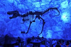 Image of T-Rex Cafe